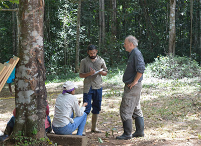 New Discoveries in the Forests of Guyana